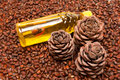 Three pine cones and oil Stock Images