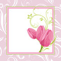 Three pink tulips in the ornamental frame Stock Image