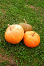 Three pumpkins Royalty Free Stock Photos