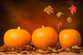 Three pumpkins with fall leaves with seasonal background Royalty Free Stock Images