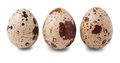 Three quail eggs isolated on white background Royalty Free Stock Photo