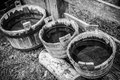 Three Rain Buckets with Water - B/W Royalty Free Stock Photo