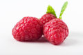 Three raspberries grouped close up of raspberry fruits together with a fresh green mint leaf behind Stock Photography