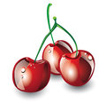 Three red cherries Stock Photo