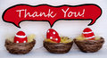 Three red easter eggs with comic speech balloon with thank you dotted and striped in baskets or nest on white wooden background Royalty Free Stock Image