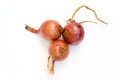 Three red onions Royalty Free Stock Photo
