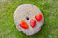 Three red peppers on old millstone in garden Stock Photo