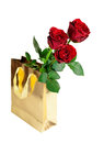 Three red roses in  gift bag on white background Royalty Free Stock Photo