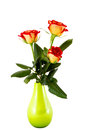 Three red roses in a green vase Stock Photos
