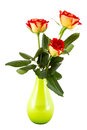 Three red roses in a green vase Stock Photography