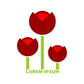 Three red tulip logo emblem for flower shop vector stylized fl flowers Royalty Free Stock Photo