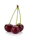 Three ripe cherries Royalty Free Stock Images
