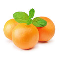 Three ripe mandarins with mint over the white Stock Image