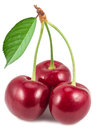 Three ripe red cherries. Royalty Free Stock Photo