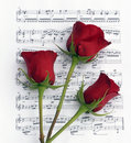 Three Rose Music Royalty Free Stock Images