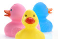 Three rubber ducks family of Royalty Free Stock Photo