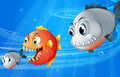 Three scary fishes illustration of the Royalty Free Stock Photo