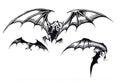 Three Scary Halloween Bats in Flight Royalty Free Stock Photo