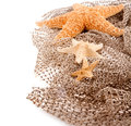 Three sea the stars of different sizes lie on the fishing net Stock Image