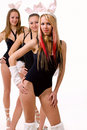 Three sexy playgirls with bunny ears isolated Royalty Free Stock Images