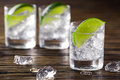 Three shots with gin and tonic Royalty Free Stock Photo