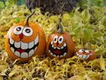 Three Smiling Painted Halloween Pumpkins with a Tree Trunk in th Royalty Free Stock Photo