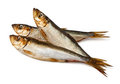 Three sprats Stock Images