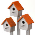 Three starling house Royalty Free Stock Photo