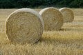 Three straw bales compressed into lying on the field Royalty Free Stock Photo