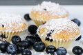 Three sweet blueberry muffins with powdered sugar on slate dark Royalty Free Stock Image