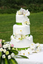 Three tiered wedding cake Stock Image