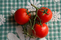 Three tomatoes sweet on a kitchen towel Royalty Free Stock Images