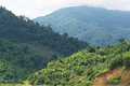 Three tones of mountains view in thailand Royalty Free Stock Image
