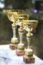 Three trophy,goblets Stock Photography