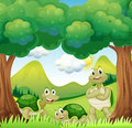 Three turtles in the woods illustration of Stock Photography