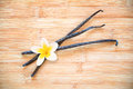 Three vanilla pods with a flower Royalty Free Stock Photo