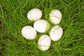 Three white eggs in green grass a nest of Royalty Free Stock Photography