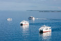 Three White Ferries on Calm Blue Water Royalty Free Stock Image
