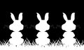 Three white silhouette of a rabbit on a black background Royalty Free Stock Photo