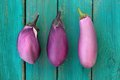 Three whole fresh organic violet aubergines on old turquoise tab Royalty Free Stock Photo