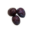 Three whole plums on white background Royalty Free Stock Photo