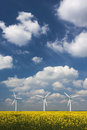 Three wind turbines under a blue cloud strewn sky trio of in canola field deep and wispy white clouds Royalty Free Stock Image