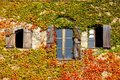 Three windows in Autumn Royalty Free Stock Photo