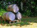 Three Wine Barrels Stock Photography