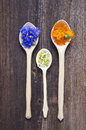 Three wooden spoons with fresh medical herbs Royalty Free Stock Photo