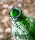 Throat old green bottle in nature Royalty Free Stock Photo