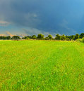 Thunderstorm field in summer country Royalty Free Stock Image