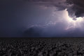 Thunderstorm with lightning in plowed field. Thunderstorm backgr Royalty Free Stock Photo