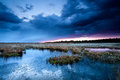 Thunderstorm over swamps in spring drenthe netherlands Stock Image