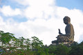 Tian tan buddha surrounded by trees and leaves Stock Photography